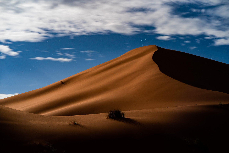 Moonlit Sahara by Igor Pavlenko