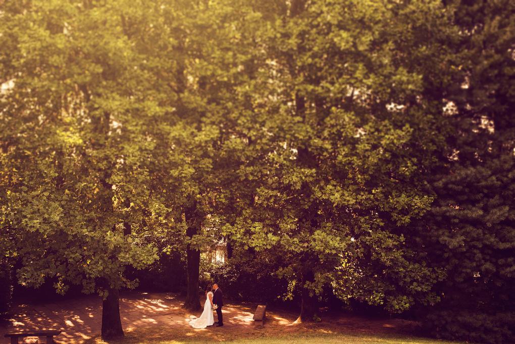 Wedding Love by Alessandro Cetraro