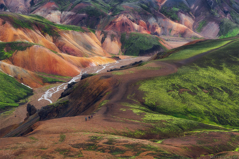 Iceland Walkers  by Matteo Callisti