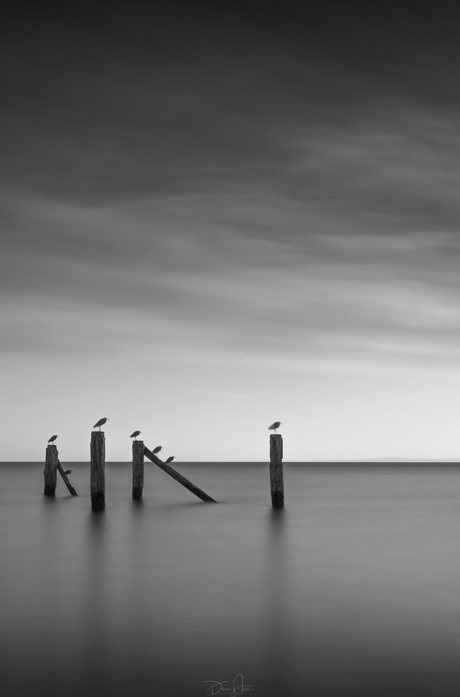 Tranquility by Danny Tan