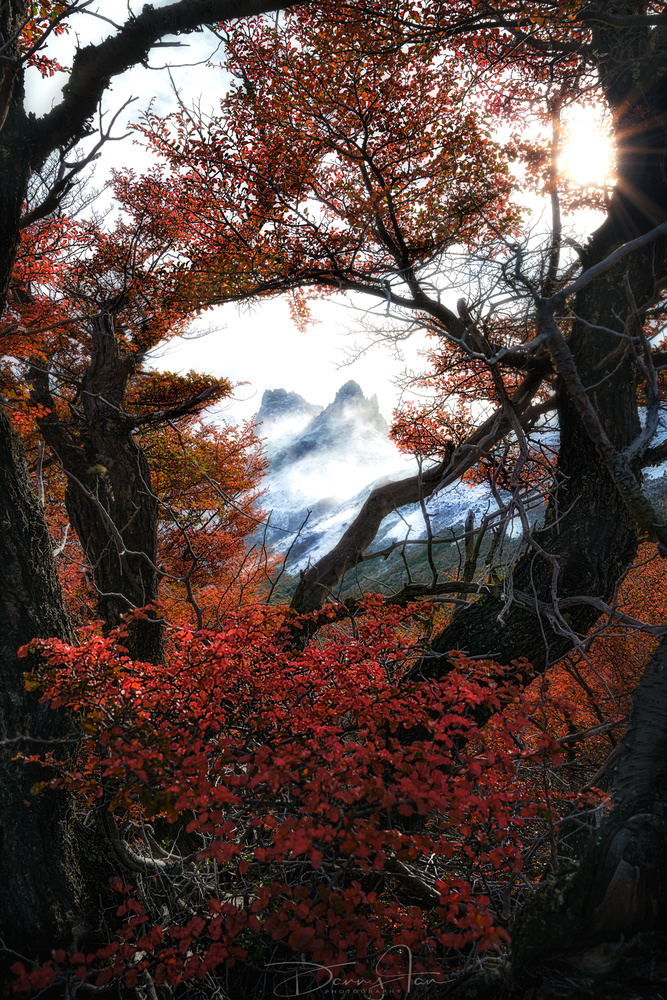 Autumn Frame by Danny Tan