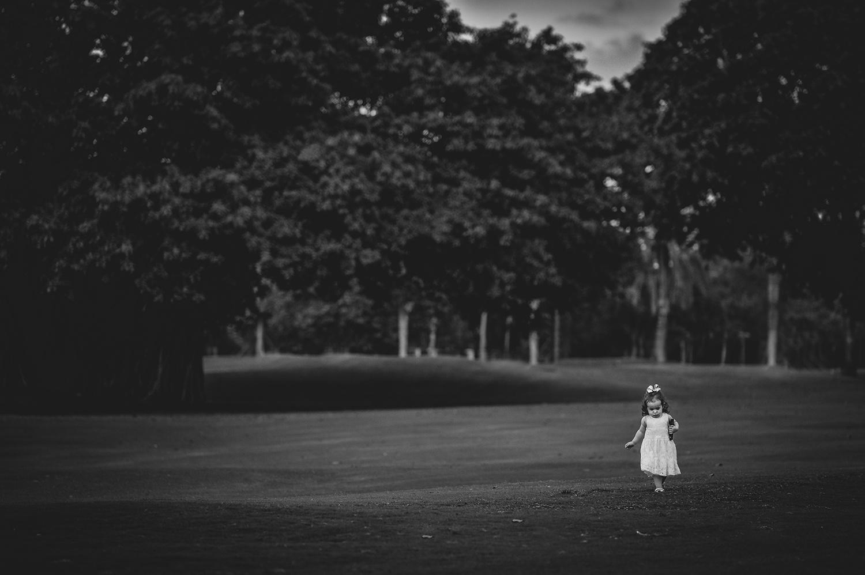 June Wanderer by Adriana Avello