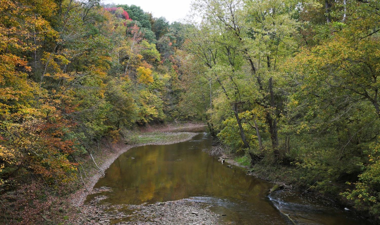 Big Walnut Creek by William Hill