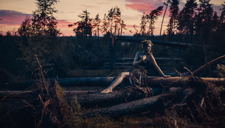 Madame Bois by Sanna Vornanen