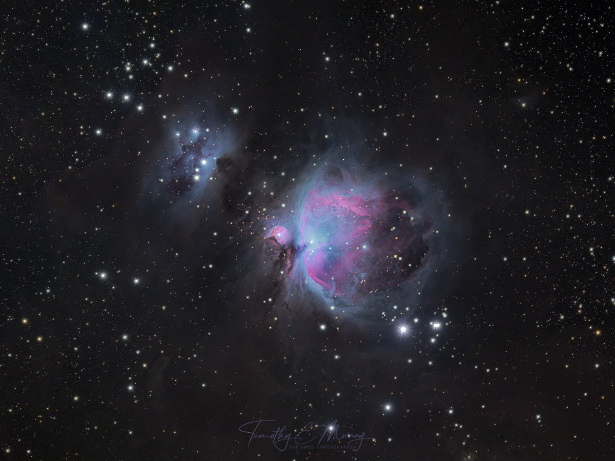 Orion, The Hunter and Birthplace of Stars by Tim Murray