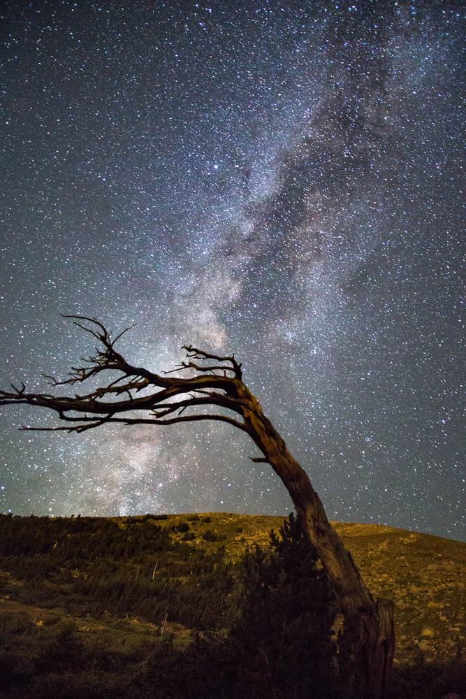 Ancient View by Matt Snow