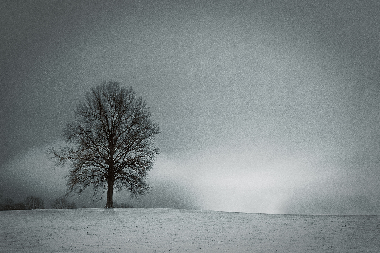 Solitude by SixStudio Six