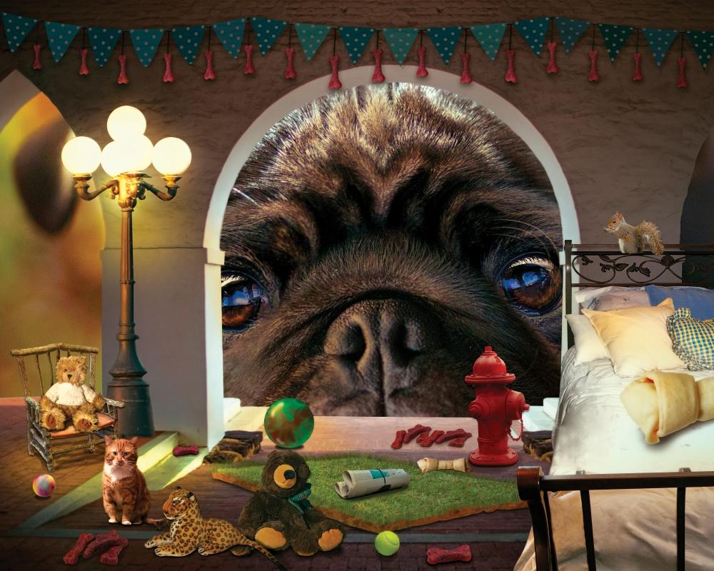 Doggie Dreamhouse by jamie lawson
