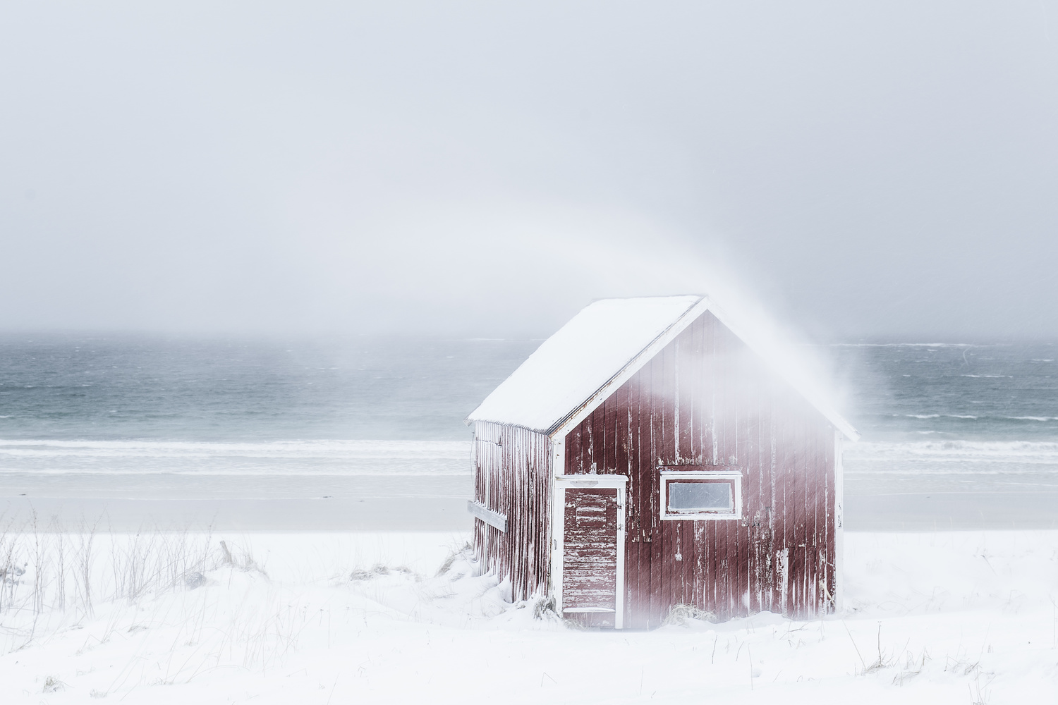 The winter has arrived by Annelin Hoff