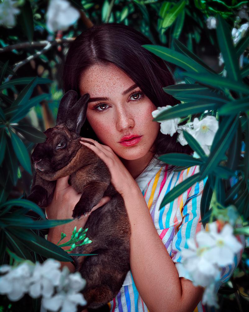 Bunny by Hananiah Aldrich