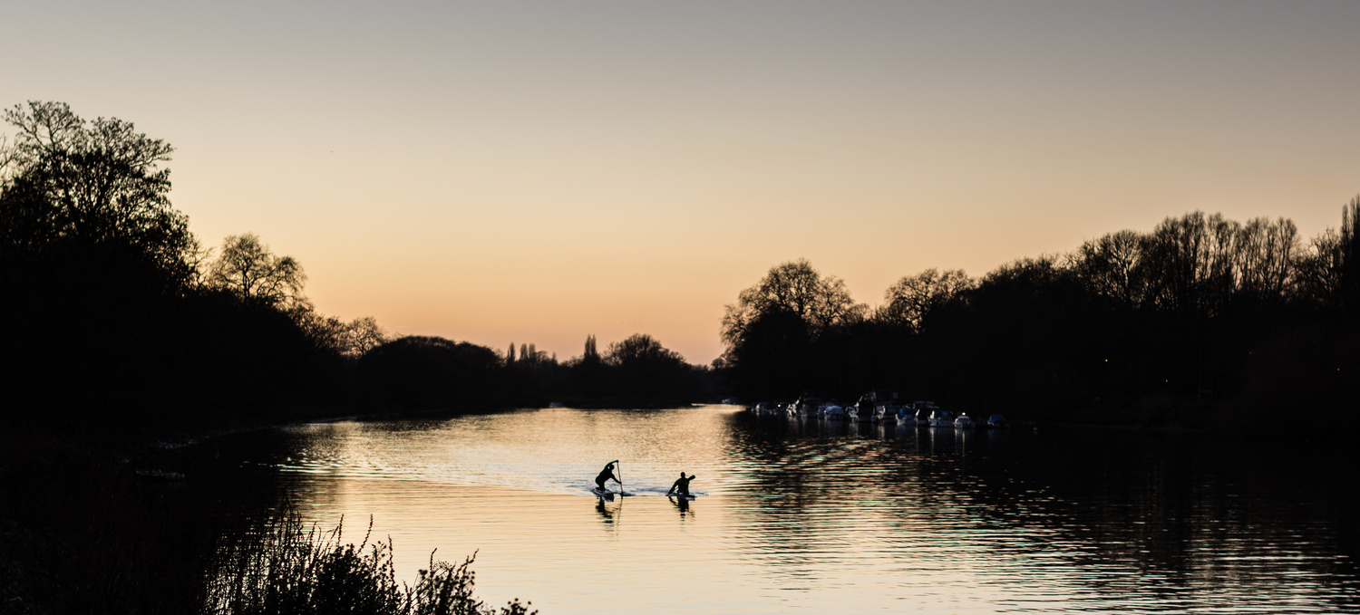 Paddlers Training on the River Thames by Chris Wade
