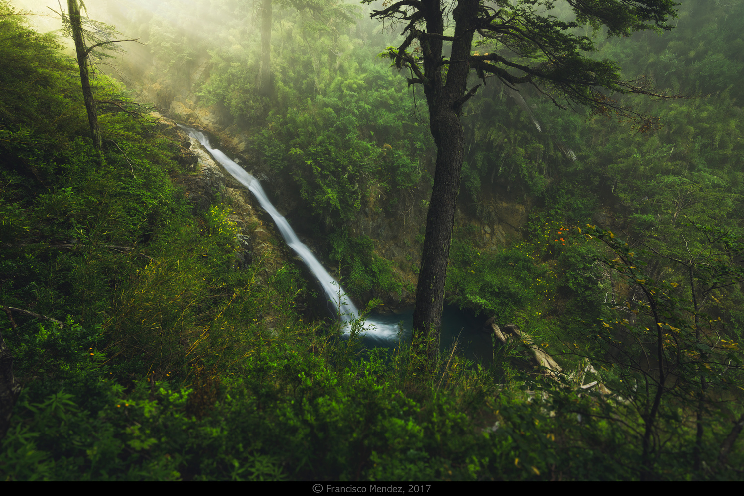 Discovering Hidden Waterfalls by Francisco Mendez