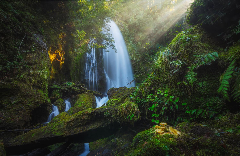 Hidden Chilean Falls by Francisco Mendez