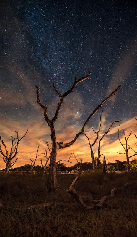 Seabrook Island  by Patrick Hall