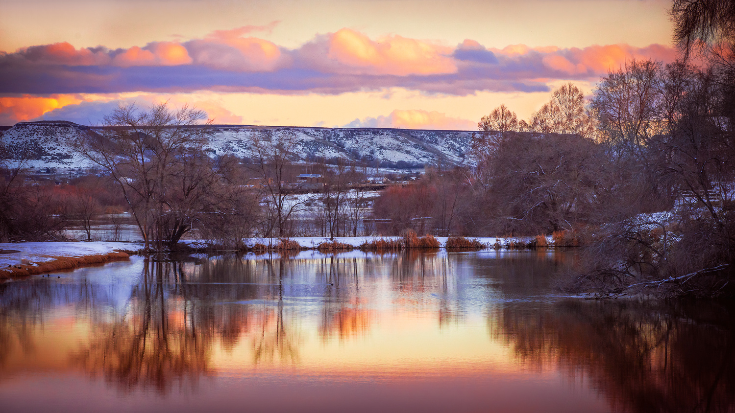 Warmth in the Cold by Jeff Walsh