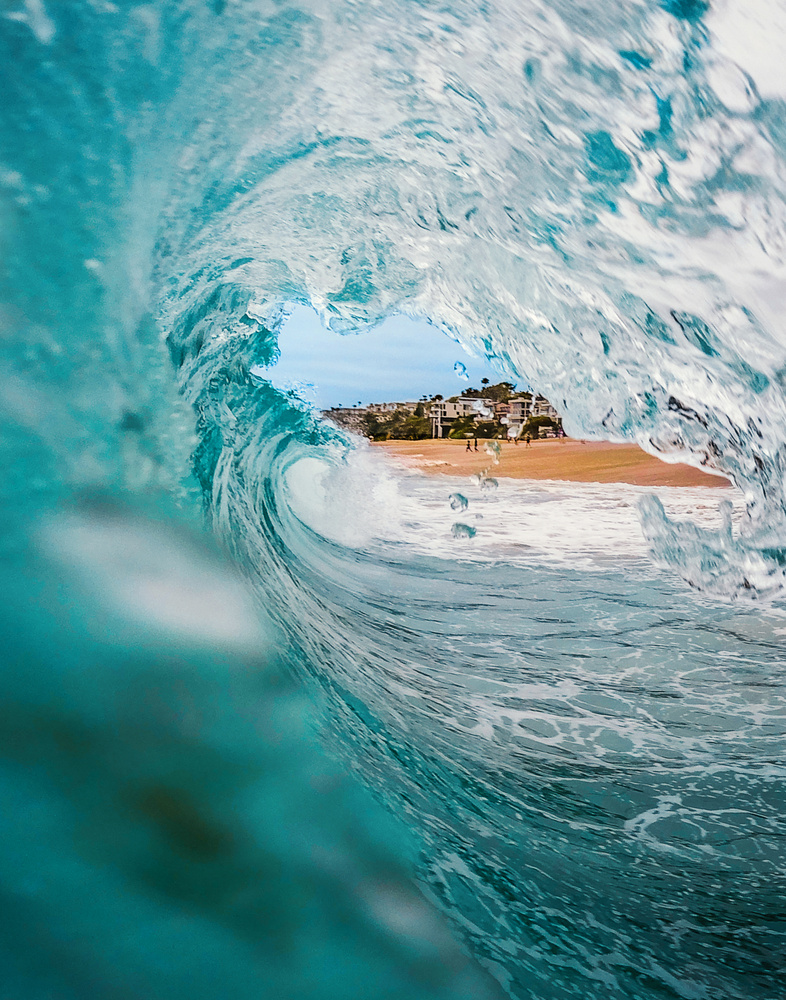 In the Barrel of the Canon by Jeff Walsh
