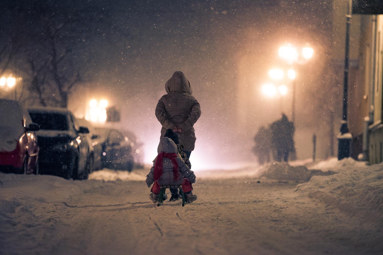 sledge by Vasile Godiciu