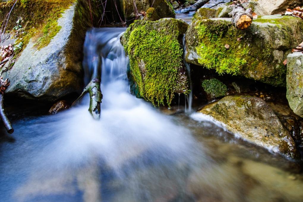flowing by Vasile Godiciu