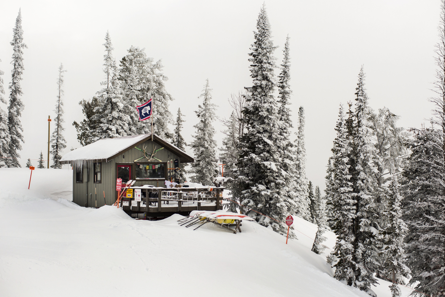 Jackson Hole Shack by Andrew Petersen