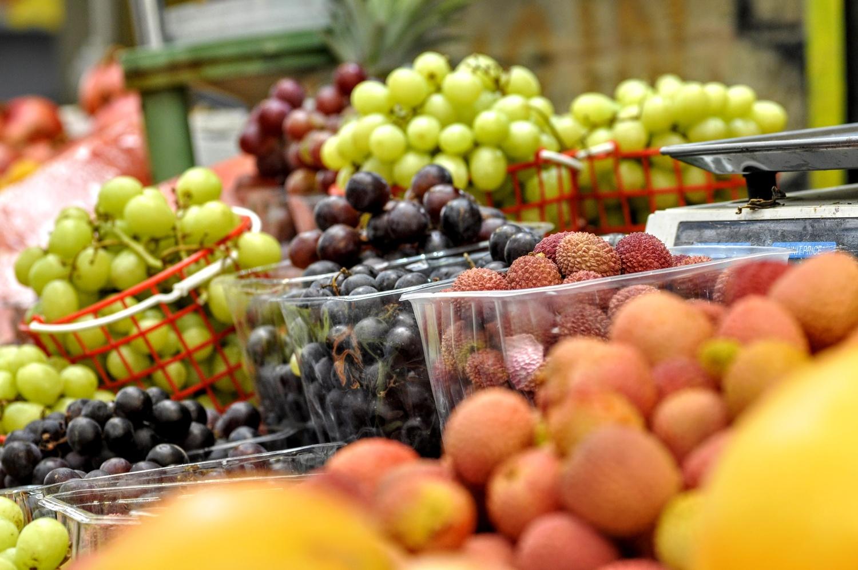 fresh fruit by shraga kopstein