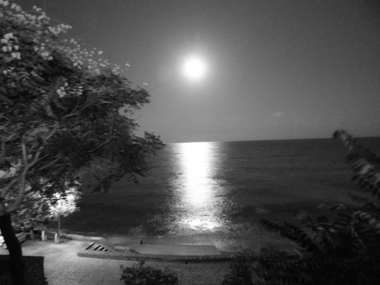Full moon at sea side by Blaga Dimitrova