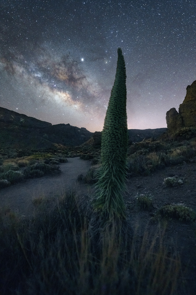 nightwatch by Kai Hornung