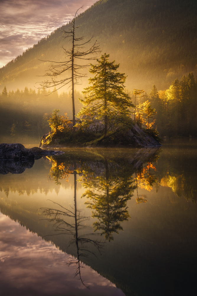 Golden morning by Kai Hornung