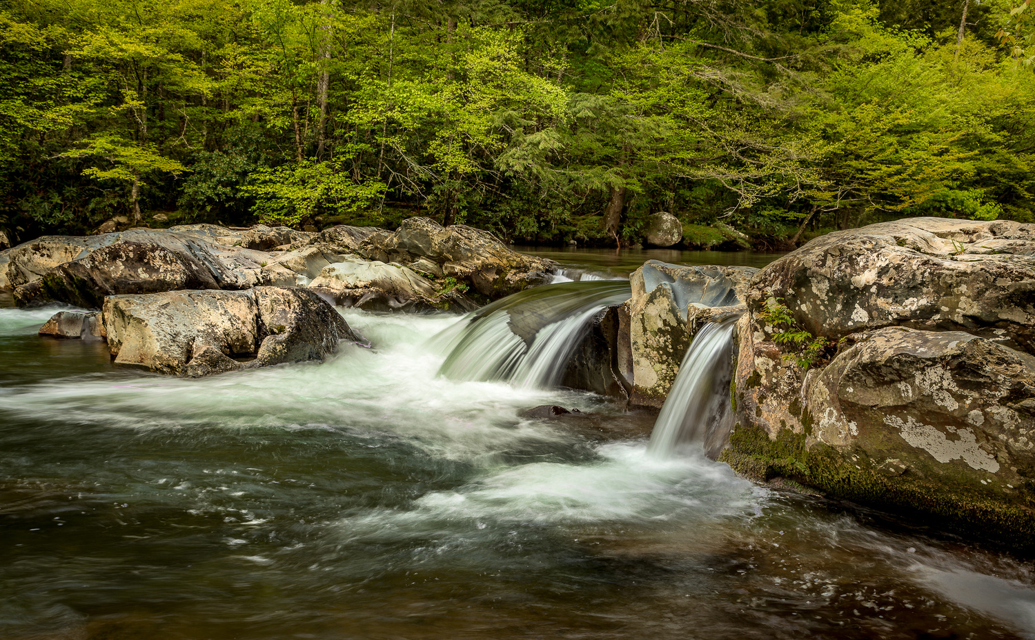 Small Falls, The Great Smokies by Ed Sanford