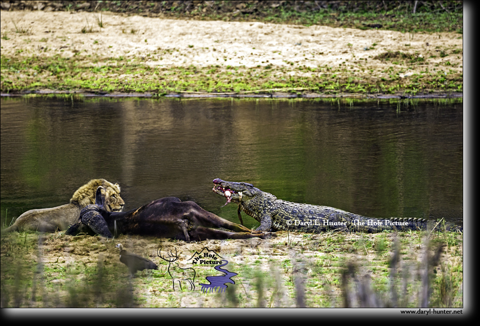 Kruger Dinner Party by Daryl Hunter
