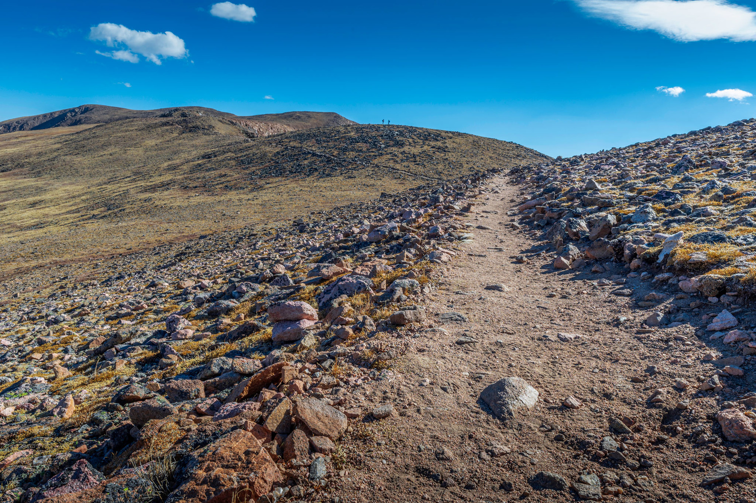 Hiking Trail in Colorado by Dave Spates