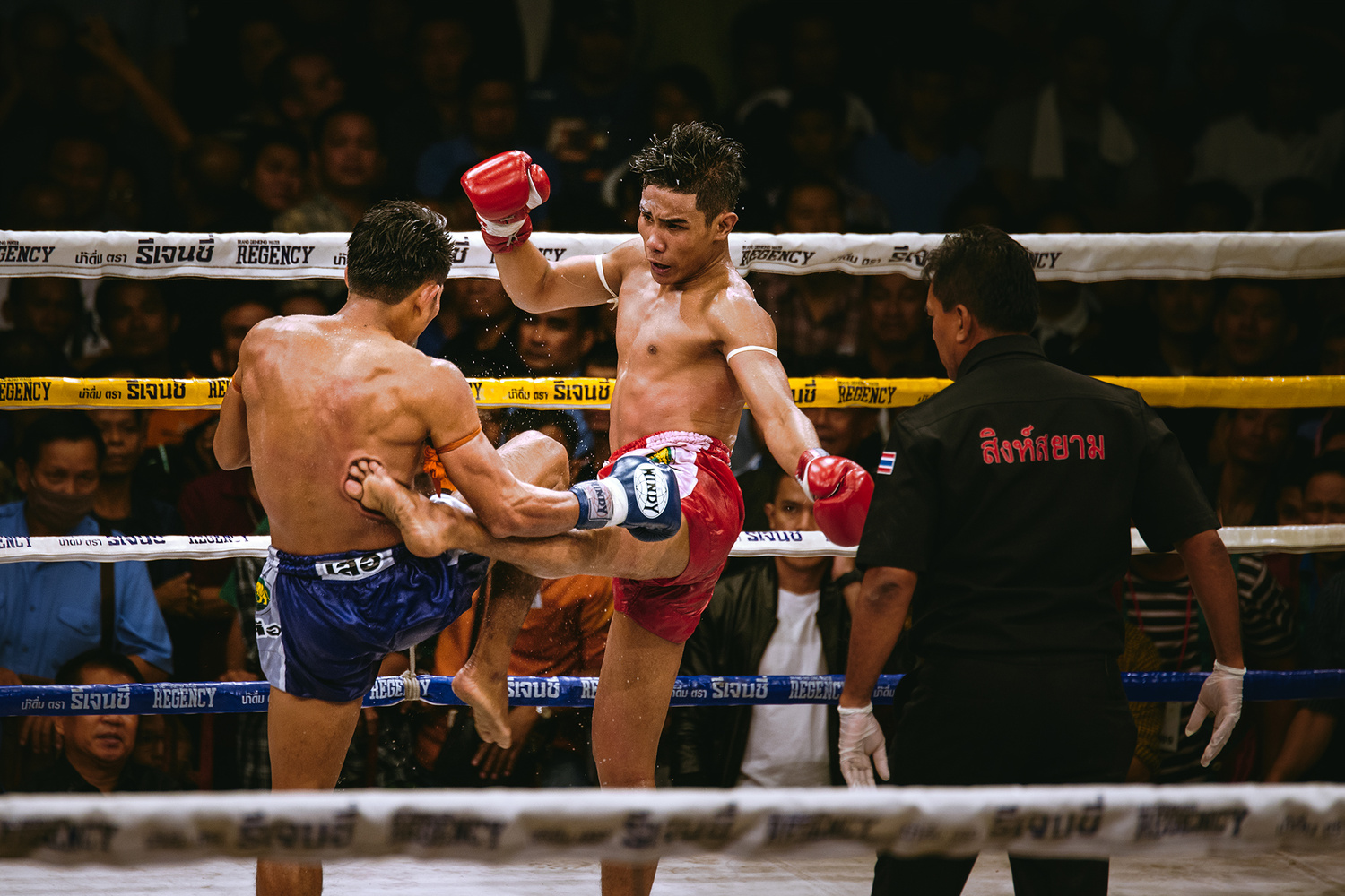 Muay Thai by Marek Stefech