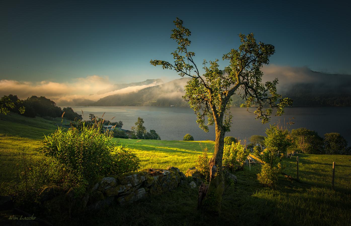 Morning Glow by Wim Lassche