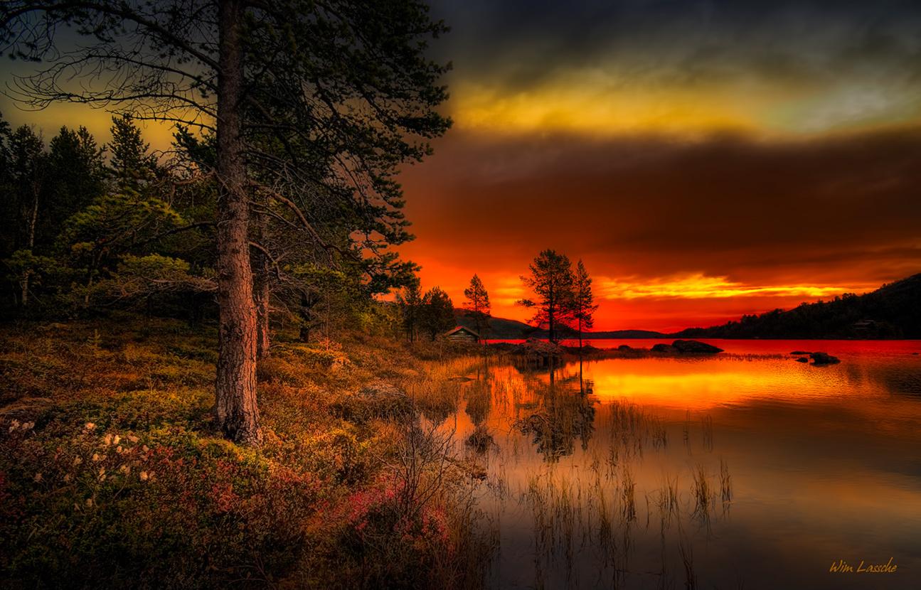Midsummer Night by Wim Lassche