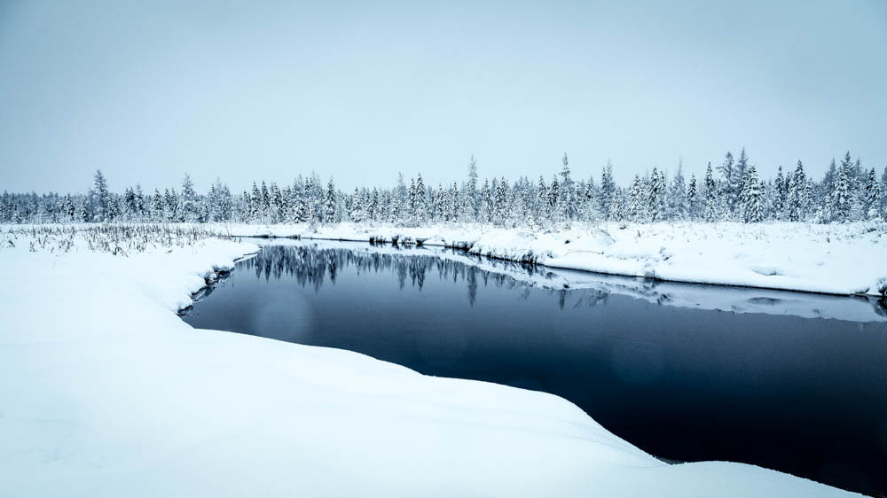 Island Lake #41 by Todd Higgins