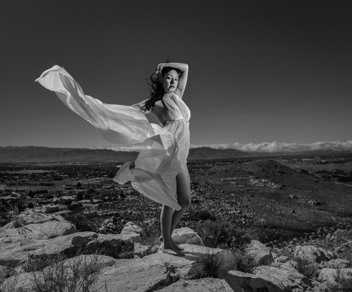 Wind swept by Daniel Hayes