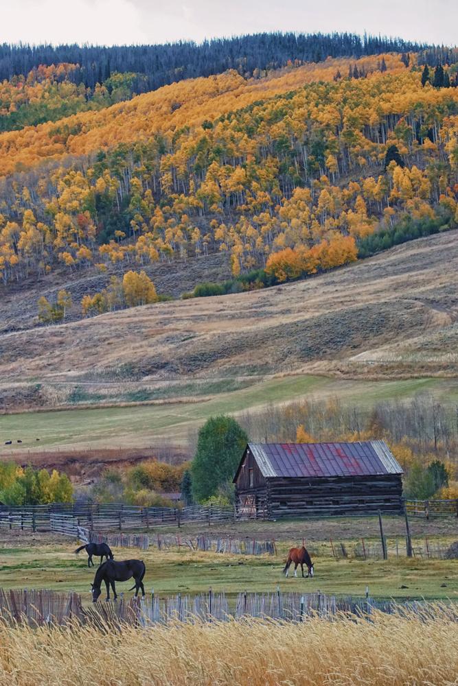 Colorado Horse Ranch by Brian Kerls