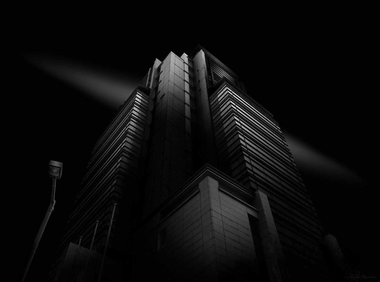 Perspective by Naoki Fujihara