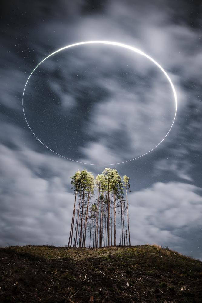 The Holy Treenity by Arvids Baranovs