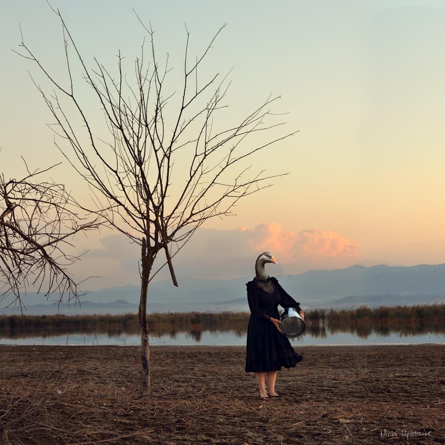 lake Koroneia by Nicki Panou