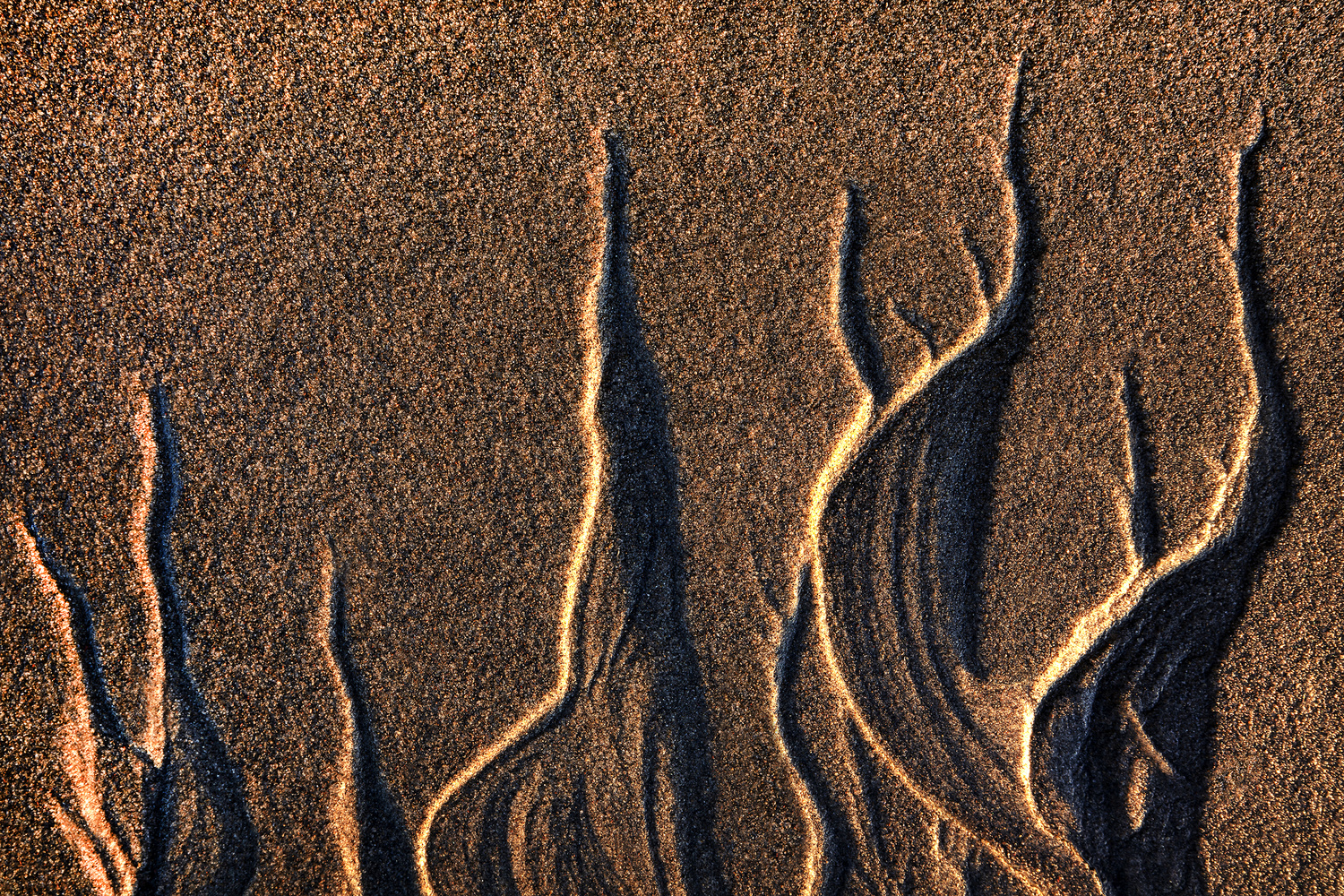 Sand shapes by Stephen Clough