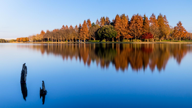 Autumn in Tokyo by Hisahiro Suganuma