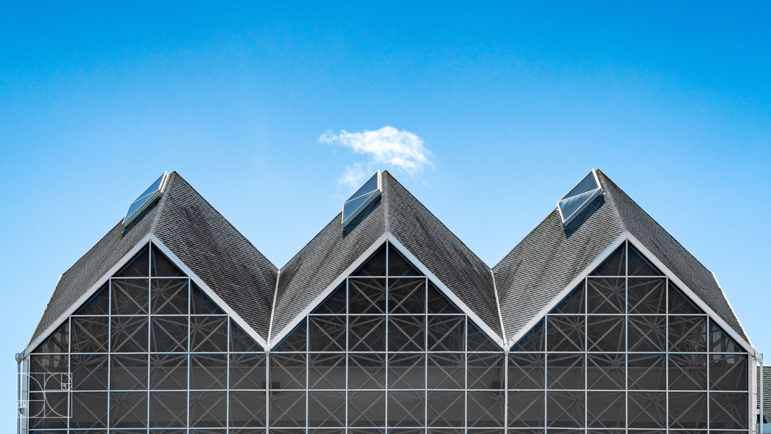Rooftop Trio by Jesse Coleman