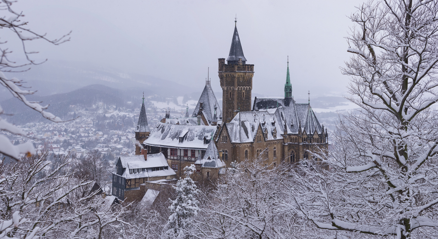 Wernigerode Castle by Cole Messina