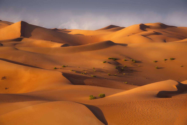Sands of Time by Ali Salem