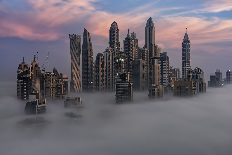 Foggy Morning by Ali Salem