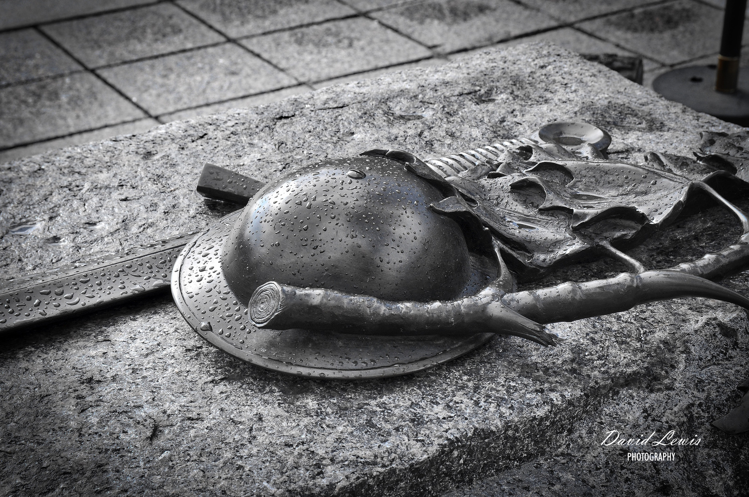 Tomb of the Unknown Soldier - Ottawa by David Lewis