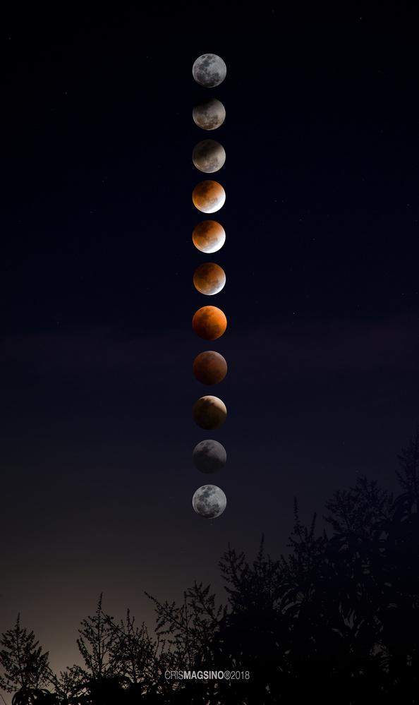 Blue Moon - Blood Moon by Cris Magsino