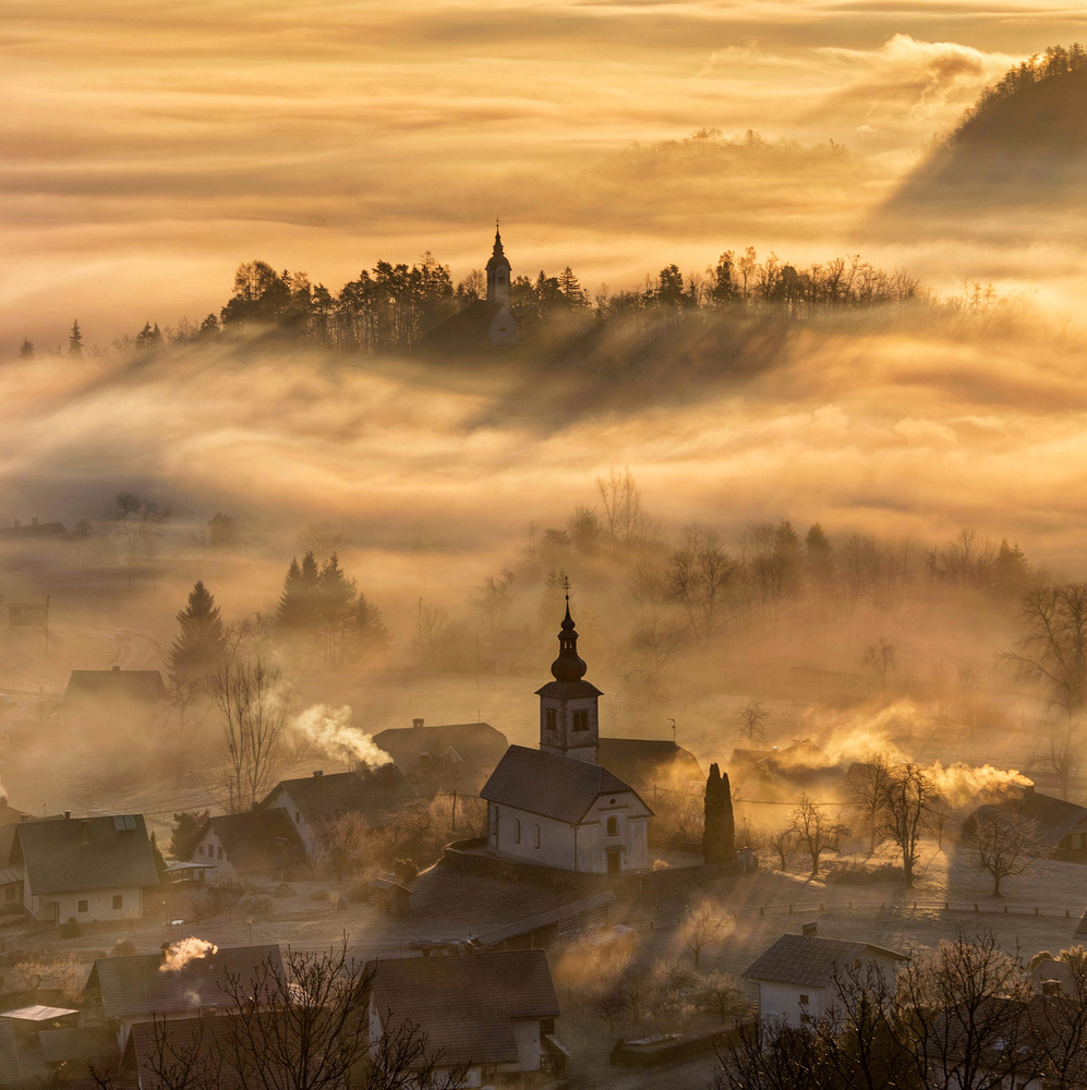 A golden morning by Ales Krivec