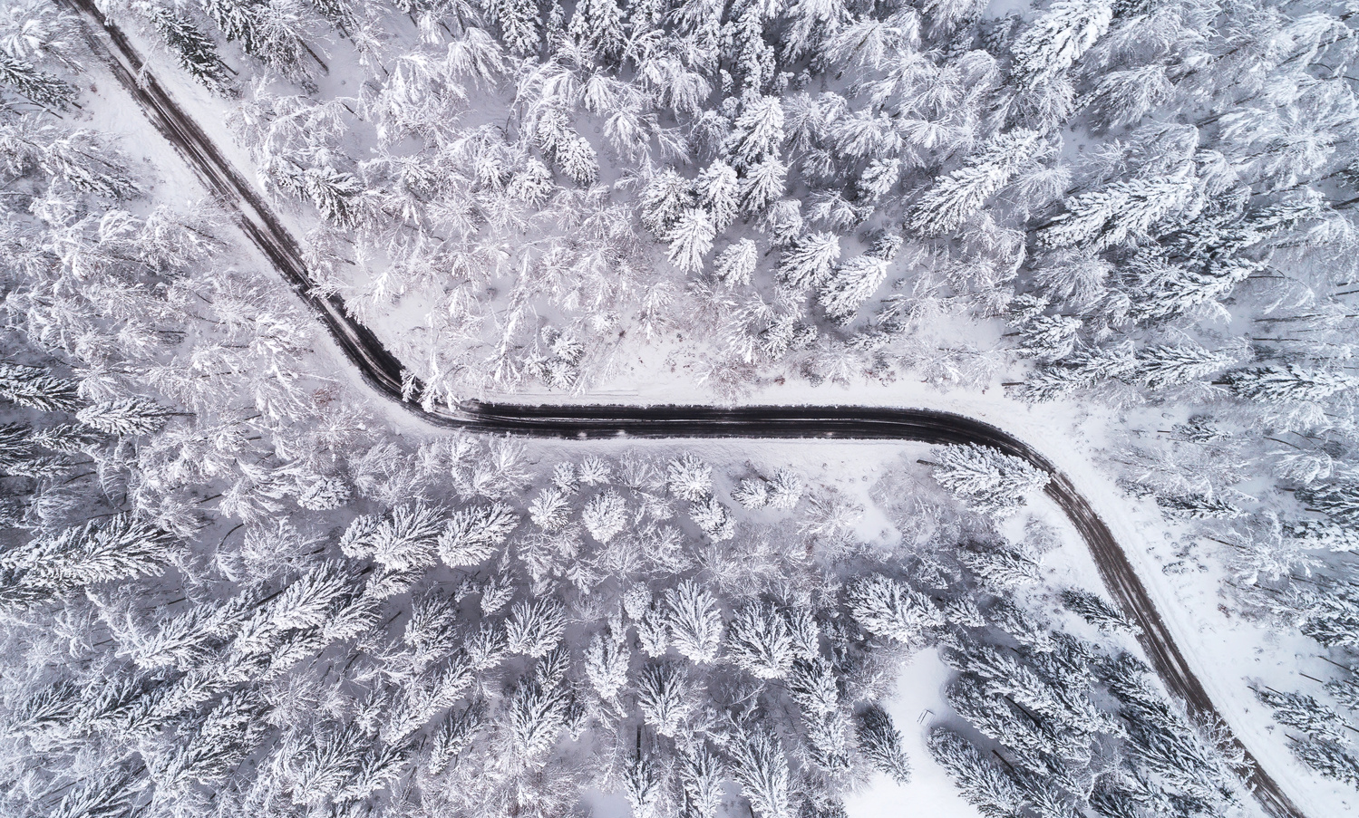 Winter line by Ales Krivec