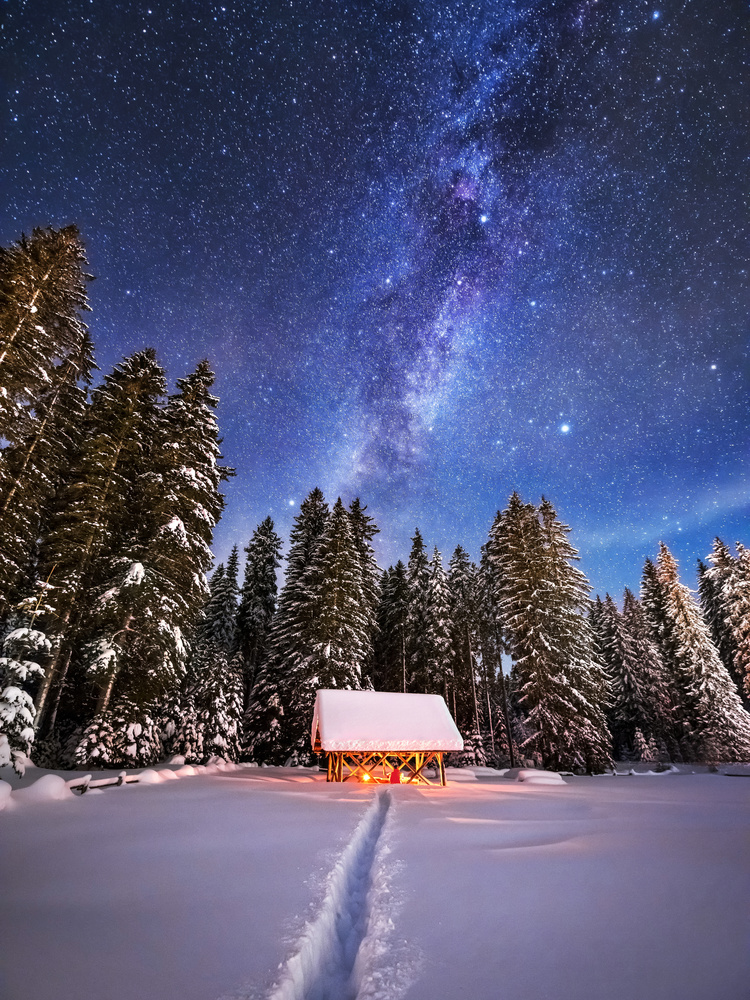 Under the starry night by Ales Krivec